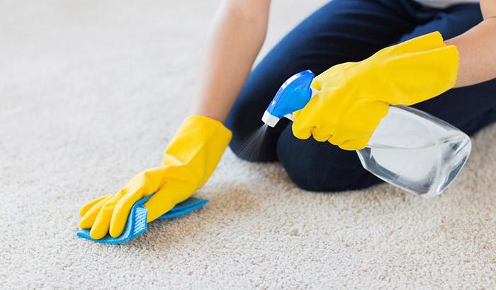 marine carpet cleaner